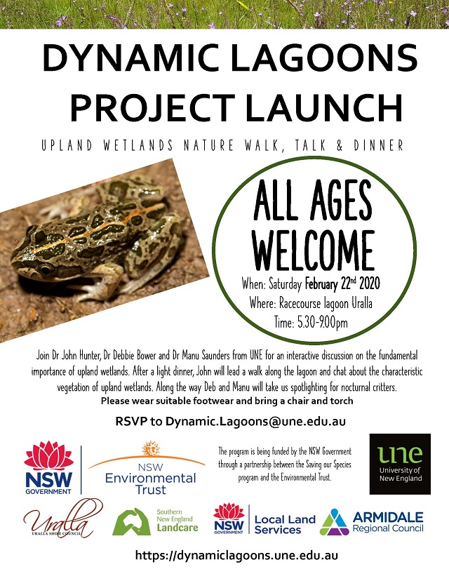 DYNAMIC LAGOONS PROJECT LAUNCH V5