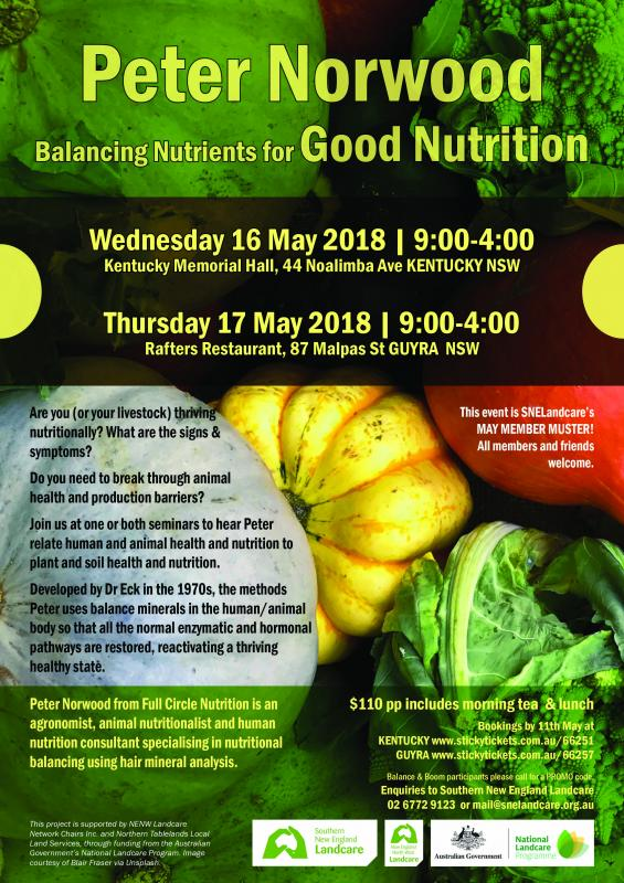 Balancing Nutrients for Good Nutrition | GUYRA