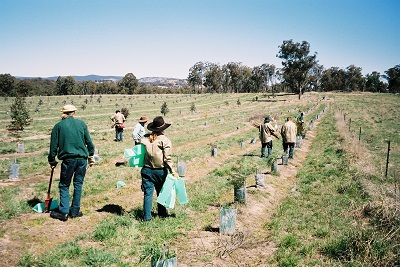 Landcare tools in use