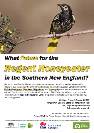 What future for the Regent Honeyeater in SNE320