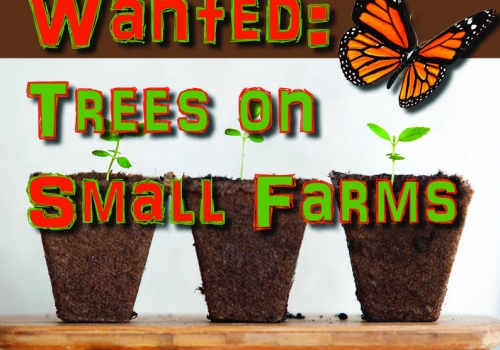 Trees on Small Farms grants available!