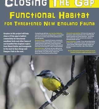 Landcare Plantings Save Threatened Woodland Birds