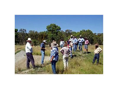 Balala Brushgrove Landcare